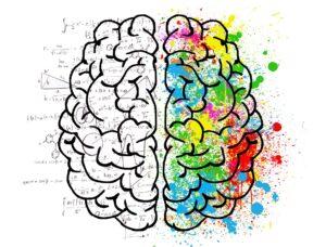 shilajit brain functionality